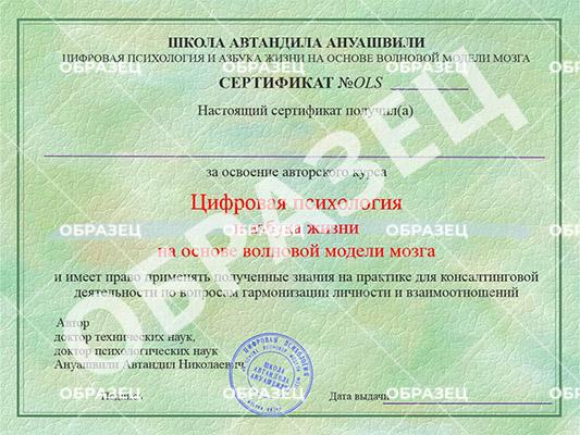 Образец сертификата о прохождении онлайн курса ВКП
